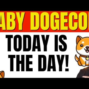 BABY DOGECOIN - TODAY IS THE DAY! FIND OUT THE LATEST WITH BABY DOGE COIN!