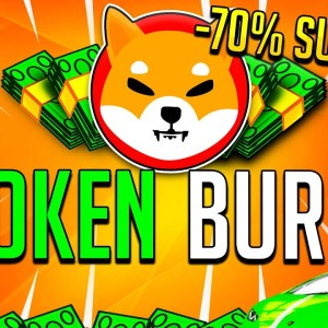 BURN ALL COINS! SHIBA INU HOLDERS WATCH IN 24 HOURS!