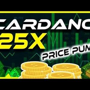 Cardano ADA 25X Price Prediction… Realistic?   Crypto News Today