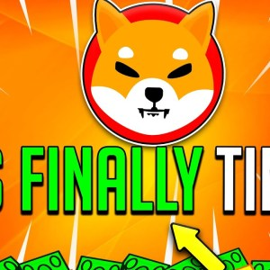 WHY SHIBA INU'S PRICE IS NOT GOING UP! (EXPOSED!) - SHIB Price Trend 2021 & 2022