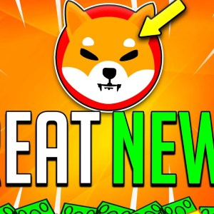 SHIBA INU COIN WE FINALLY DID IT! WHAT BANKS REVEALED ABOUT SHIB CHANGES EVERYTHING!