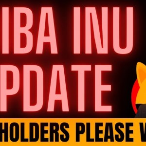 LATEST SHIBA INU UPDATE! AND SOMETHING SPECIAL FOR MY VIEWERS...