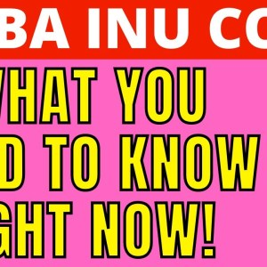 SHIBA INU - WHAT YOU NEED TO KNOW RIGHT NOW!