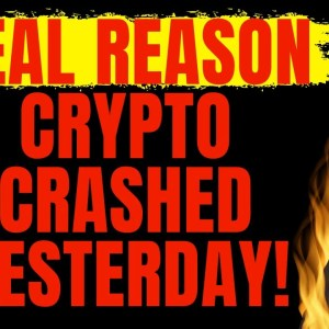 THE REAL REASON THE CRYPTO MARKET CRASHED YESTERDAY! (CRYPTO NEWS TODAY & BITCOIN NEWS!)