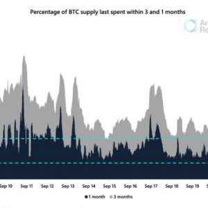 supply shock the number of bitcoin changing hands dips to 2015 levels