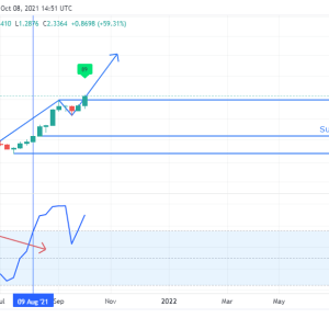 ftm price analysis fantom ftm token skyrockets into new highs weekly chart hints bearish divergence
