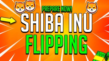 SHIBA INU IS FLIPPING!!! THIS WILL HAPPEN TONIGHT!
