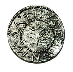 Oak Tree Money1652