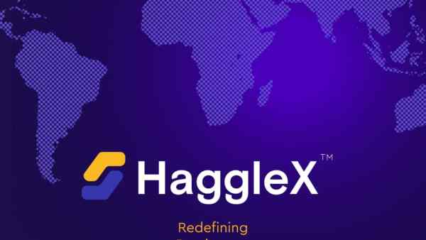HaggleX: A Unique Blockchain and Cryptocurrency Ecosystem