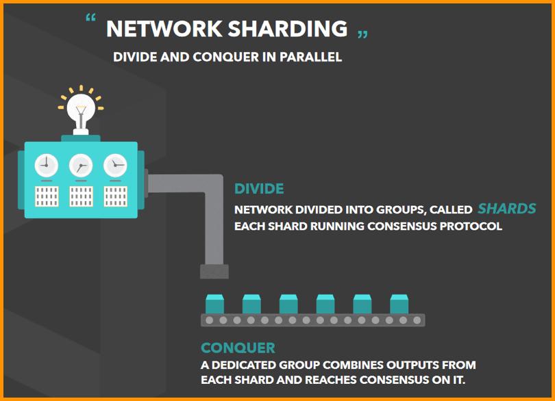 Network Sharding
