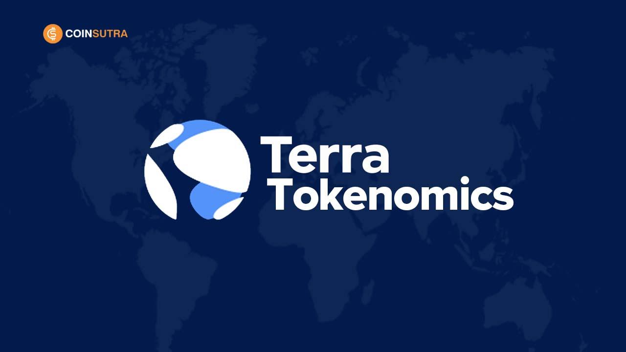 terra analysis valuation