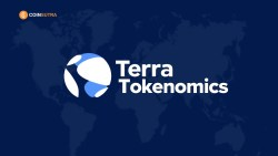 terra analysis valuation