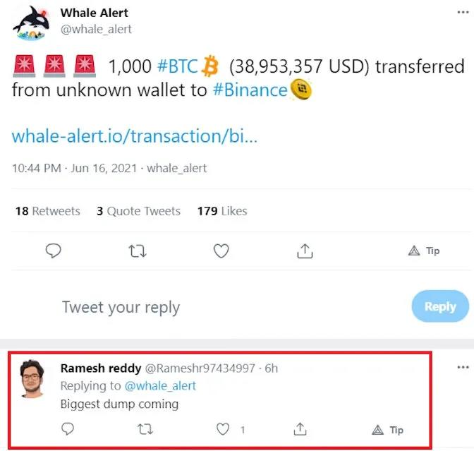 How to Track Whales?101 Wallet Tracking Guide