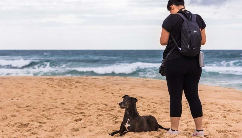 Cães e gatos adoram a Coisa, na Praia Mole não foi diferente