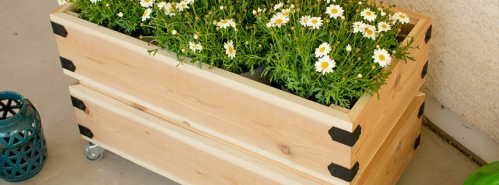 Cedar Planter Box with Iron Edges