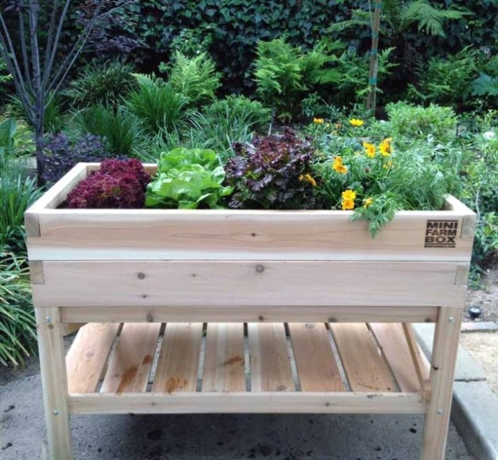 Raised Planter Box with Drainage and Shelf Storage