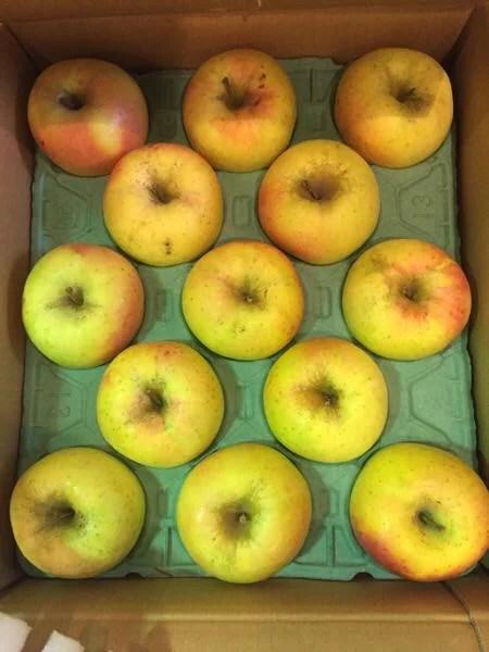 長野県cieloの『の池さん』から美味すぎるリンゴが届いた!そしてリンゴに驚く美容効果を発見してしまった!