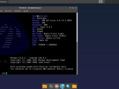 programa desde la terminal mostrando información del sistema: antergos y pacman