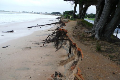 Apollo Bay damage