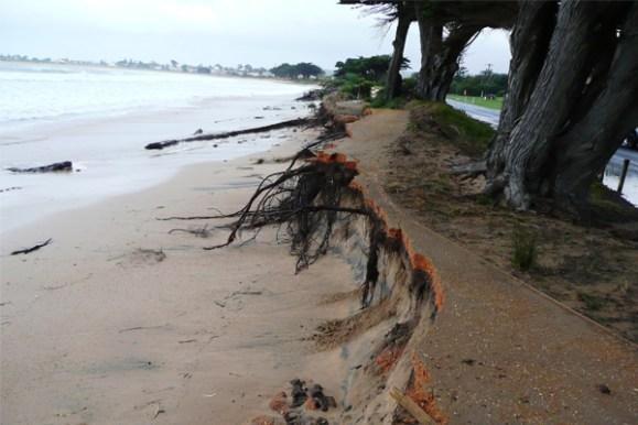 Apollo Bay damage