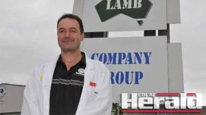Australian Lamb Company's Mick Bird says the lamb producer is bucking employment trends in Colac.