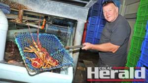 Fishermen at Apollo Bay, including Tom Igaunis, have almost filled their fishing quotas for the season.