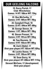 Falcons list
