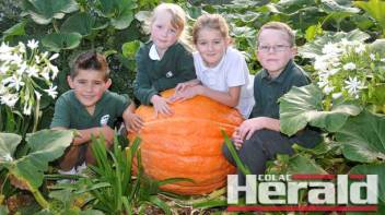 Nixon Genua, 6, Kimberly Ashton, 6,  Katelyn Marjanovic, 7, and Angus Manahan, 6, with one of Colac Primary School's giant pumpkins, which will feature in the school's entry in Colac's annual Kana Festival parade next month.