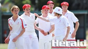 Five of the nine top-grade cricket captains have tipped Alvie to go back-to-back.