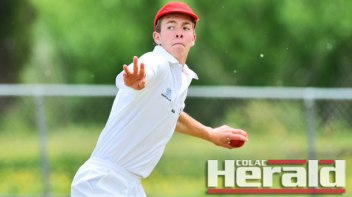 Talented cricketer Campbell McRae, pictured, is likely to get more opportunities for the Stallions in 2015-16.