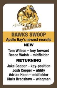 Hawks-graphic
