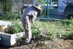 Servicios Públicos realiza Campaña de Limpieza en beneficio del Hospital General en San José del Cabo