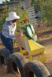 Trabajo comunitario como parte de la Justicia Cívica en Los Cabos