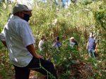 Gobierno de Los Cabos avanza en la solución del escurrimiento pluvial en Miraflores