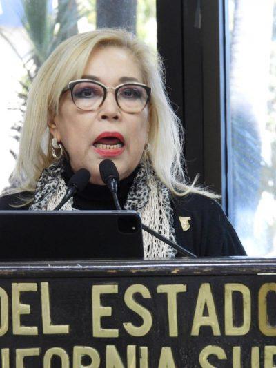 Propone Diputada Anita Beltrán Regular Privacidad de Actividades Virtuales