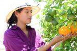 Huertos urbanos, un sistema para el cultivo de alimentos saludables