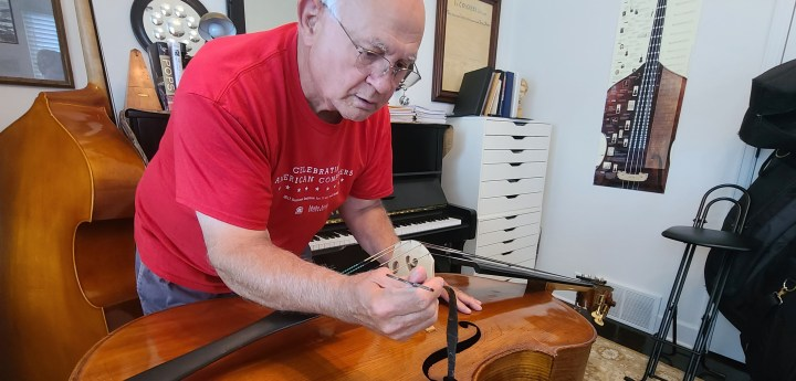 Luthier setting a string bass sound post