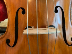 Double Bass face bridge and strings