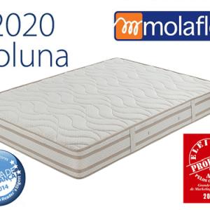 2020 Coluna
