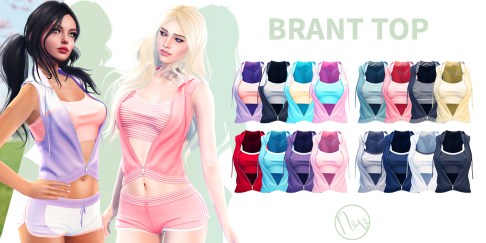 Neve - Brant Top - All Colors