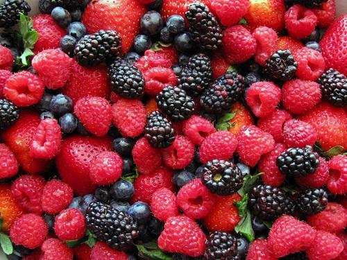 yagody - Камеры для охлаждения ягод