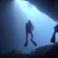 Top 5 Diving Courses for Vacation Divers