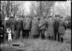 Militari la martinea pădurii cu cățel