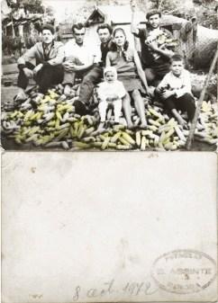 """Familie cu porumb. Verso: 8 octombrie 1972 Ștampilă roșie """"Fotograf C. Acsinte Slobozia"""" Din arhiva personală Georgeta Drăgănescu"""