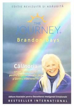 Călătoria carte Brandon bays
