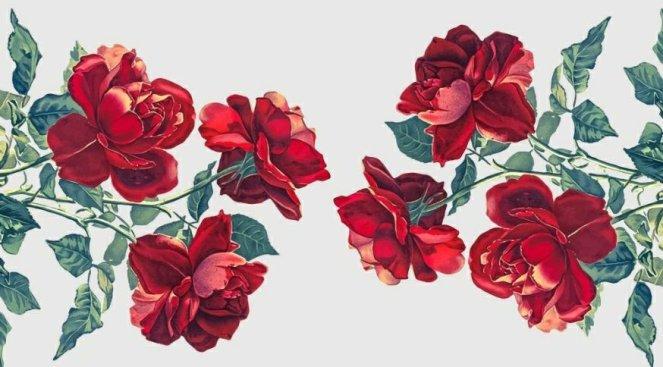 rondelul rozelor ce mor poezie