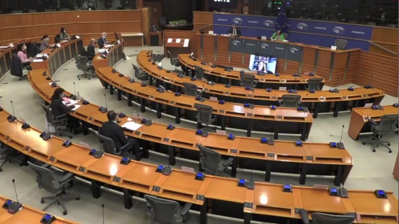 Parlamento Europeo 150321 (2)