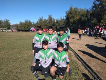 Festival Rugby