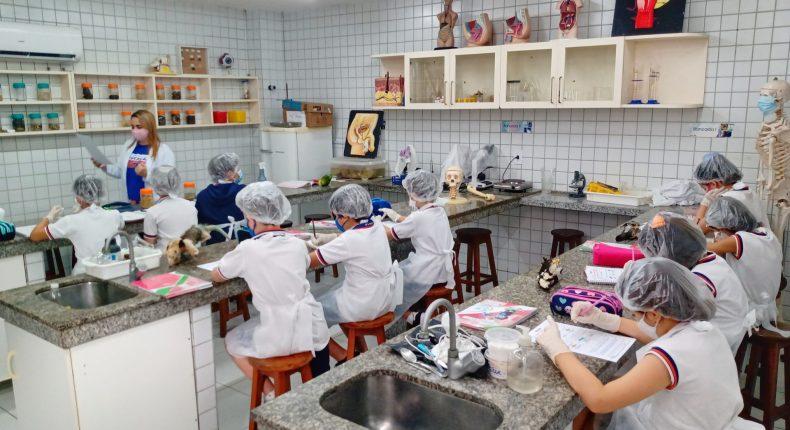 Aula em laboratório sobre vertebrados e invertebrados instiga curiosidade de alunos