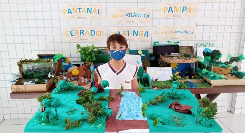 Alunos do 4º ano expõem maquetes representando os biomas brasileiros